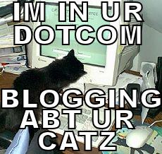 lolcatblogging.png